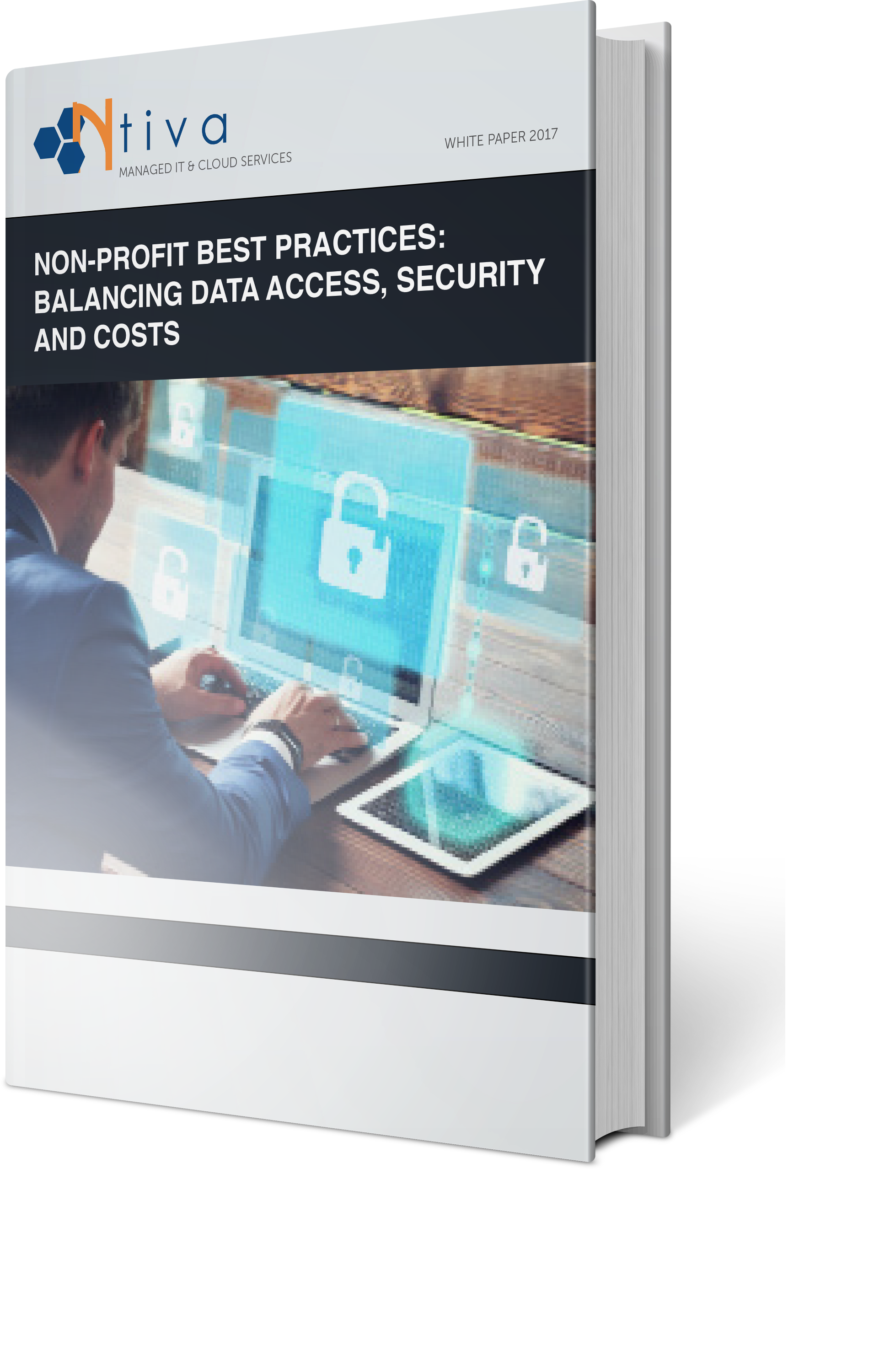 White Paper: Nonprofit Best Practices: Balancing Data Access, Security and Costs